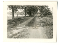 Photograph of a dirt road on the Mudge farm in Grantfork