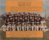 1982 Edwardsville High School Tigers Baseball Team