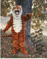 Edwardsville High School Tiger Mascot 1989-1990