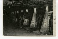 Pit Mules in the Glen Carbon Coal Mine